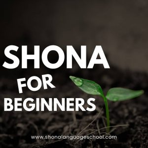 shona for beginners