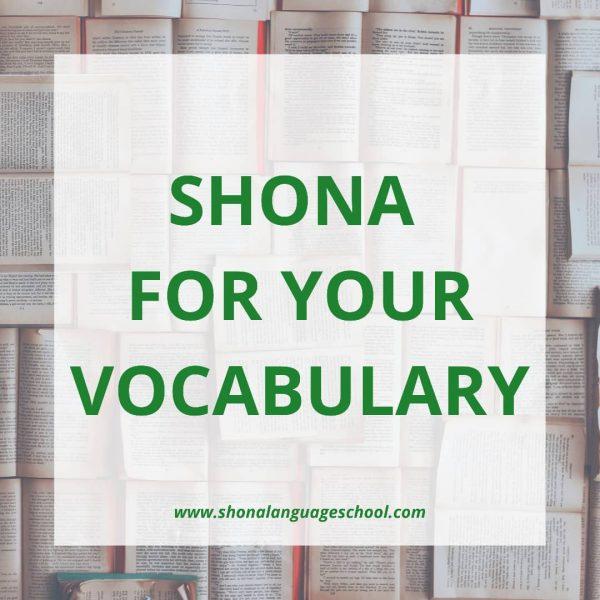 speak shona