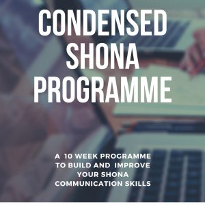 Shona for expats